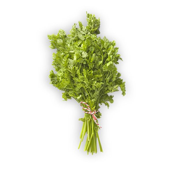 Herbes: Cerfeuil Botte
